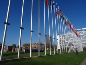 member states flags in front of the Council of Europe